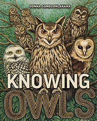 Knowing Owls