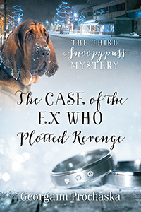 The Case of the Ex Who Plotted Revenge