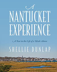 A Nantucket Experience: A Year in the Life of a Wash Ashore by Shellie Dunlap