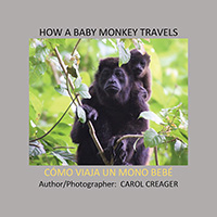 How a Baby Monkey Travels