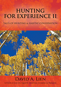 Hunting for Experience II