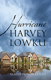 Hurricane Harvey Lowku