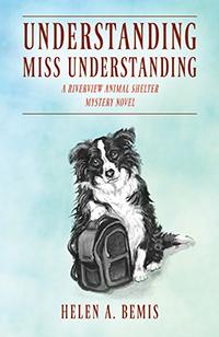 Understanding Miss Understanding