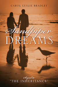 Sandpiper Dreams