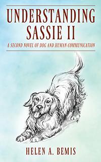 Understanding Sassie II