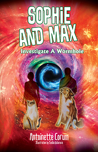 Sophie and Max Investigate a Wormhole