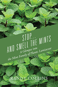 Stop...and Smell the Mints