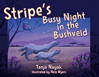 Stripe's Busy Night in the Bushveld
