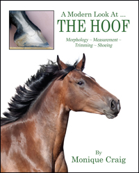 A Modern Look At ... THE HOOF
