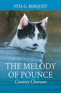 The Melody of Pounce