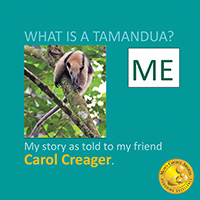 What is a Tamandua